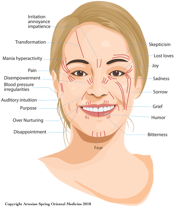 Emotion Facial Lines Map - NAES